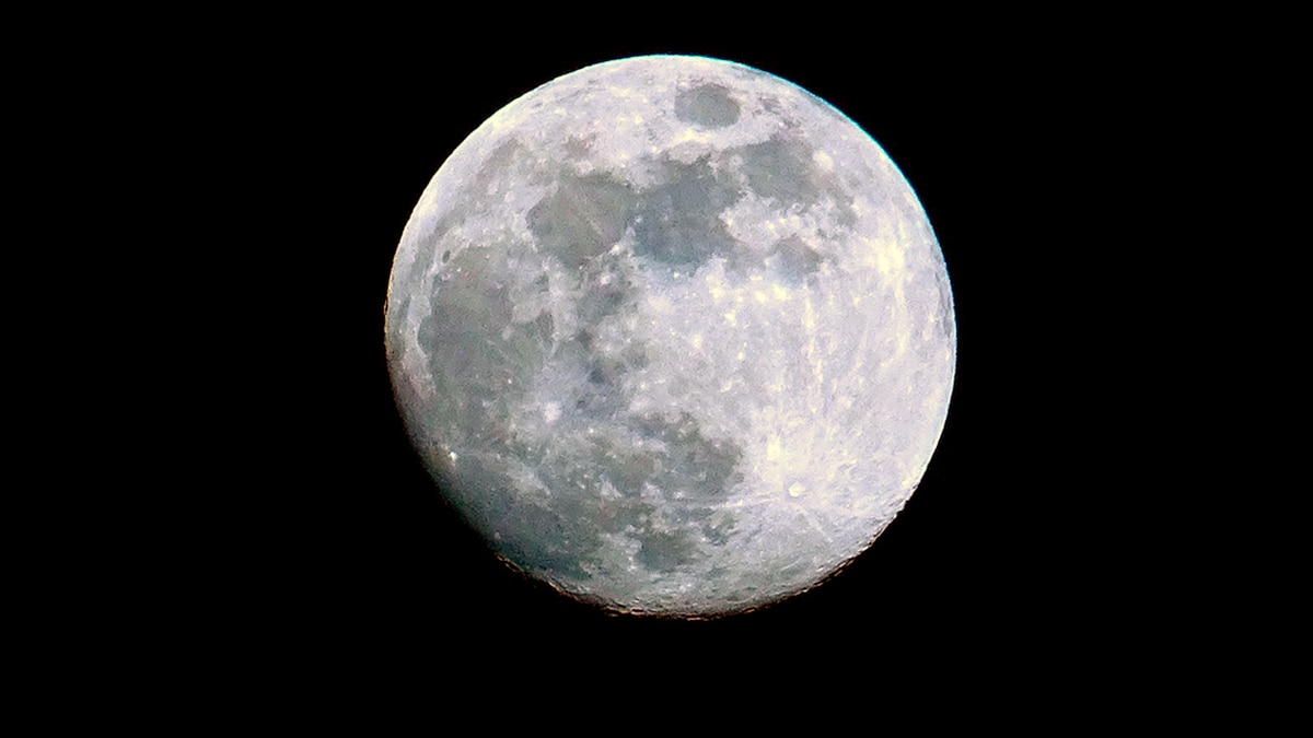 The Full Cold Moon is shining bright under a clear sky.