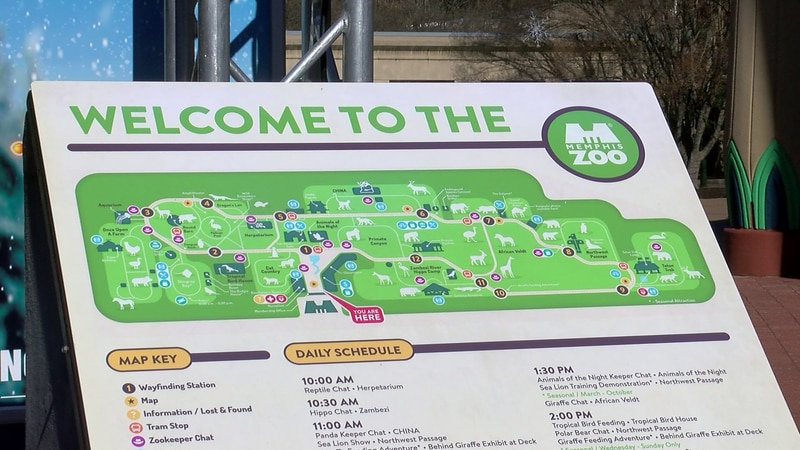 Bill proposed to allow alcohol sales at Memphis Zoo