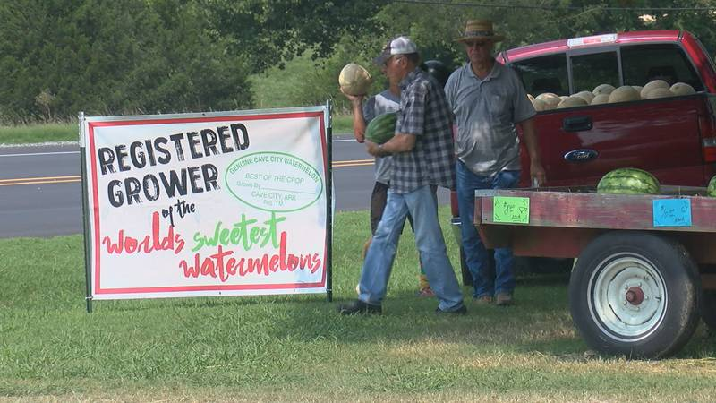 The Johnson Brothers stand is busy with customers as hundreds of melons get sold daily.
