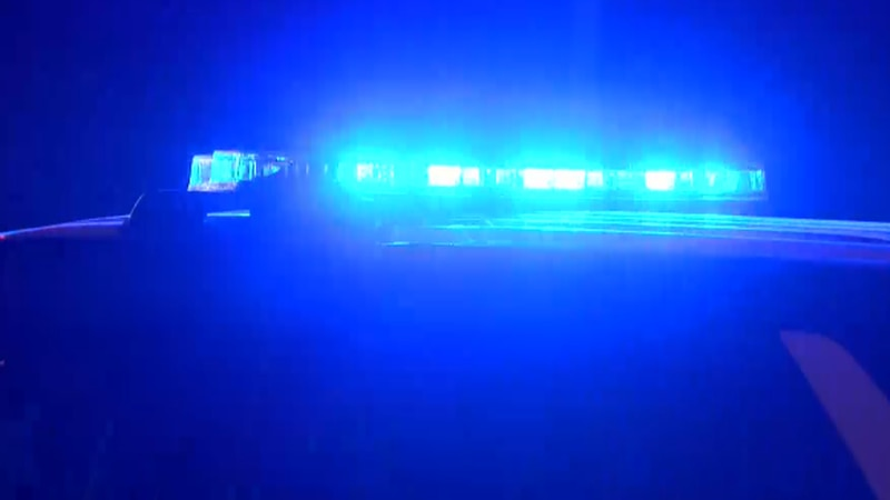 Police are investigating after two people were shot.