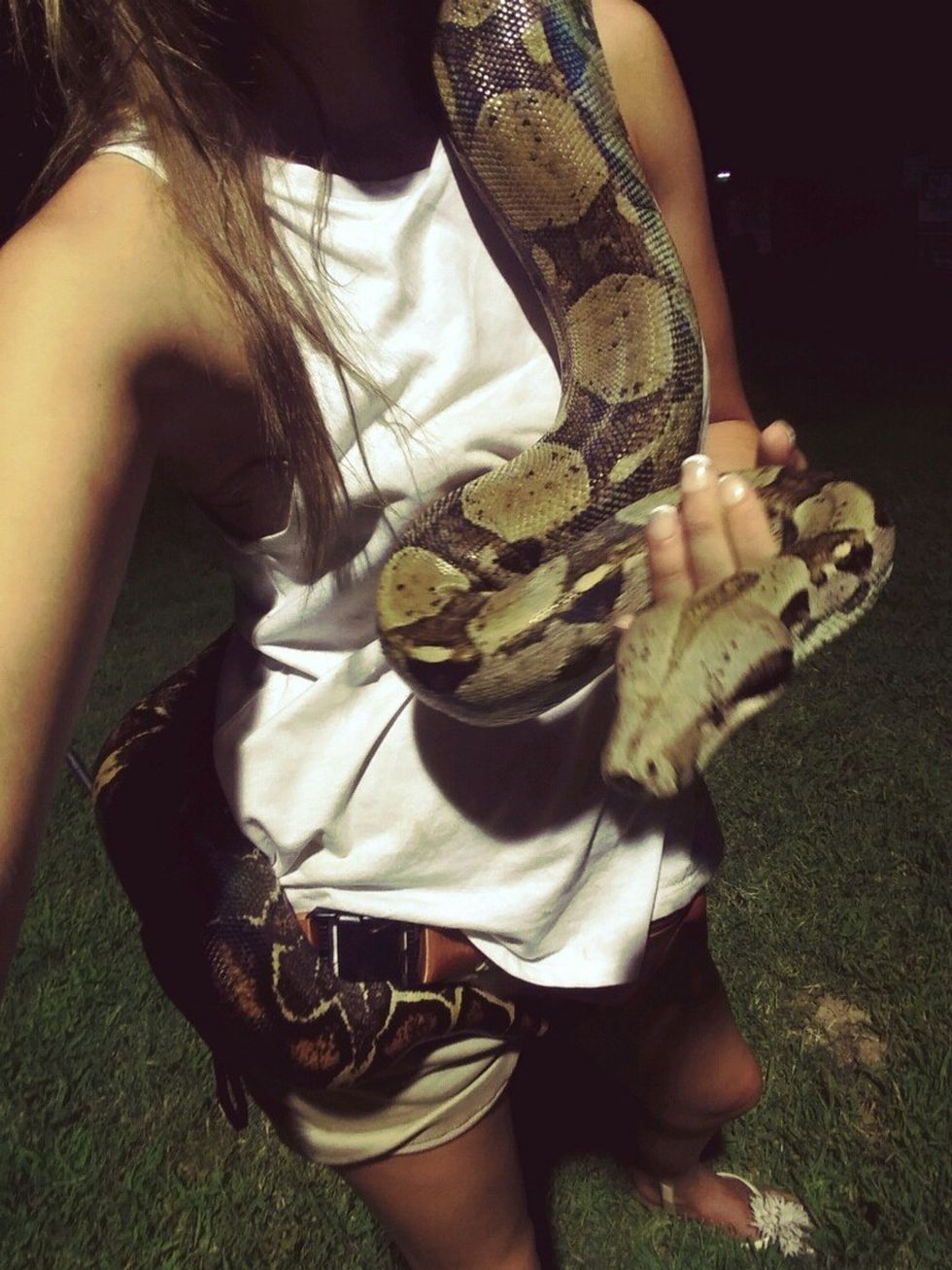 Eve the boa constrictor (source: Shelby Givens)