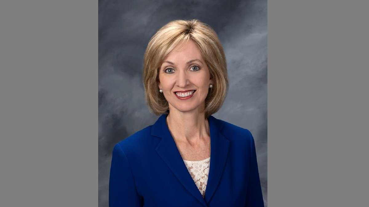 Circuit Judge Cindy Thyer announced plans Friday to run for a seat on the Arkansas Court of...