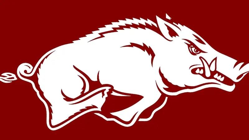 Arkansas beats South Dakota State 4-0 to advance to the regional championship