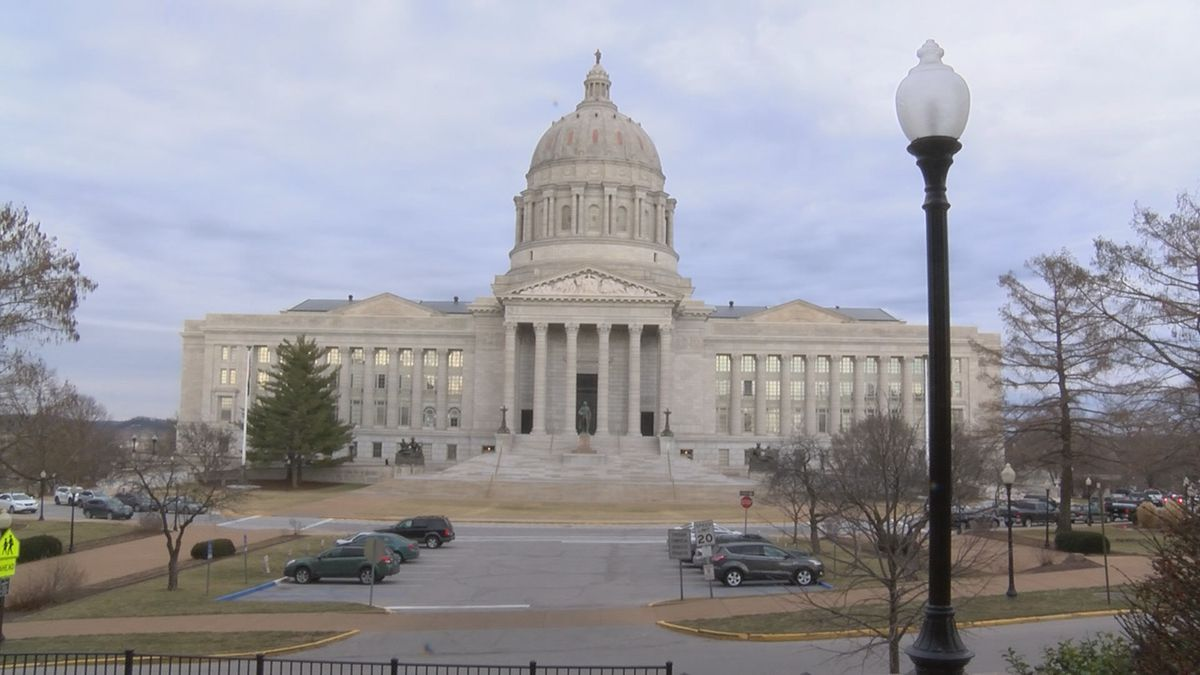Missourians are filing dozens of initiative petitions for the upcoming 2020 general election,...