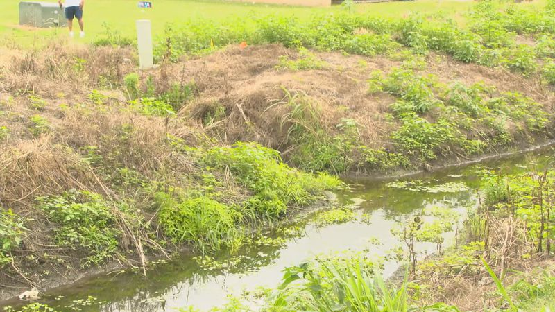 We sought answers to a possible regarding a problematic ditch in Mississippi County.