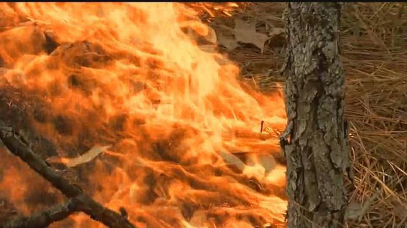 Residents in some Arkansas counties will need to wait a while before they burn their falling...