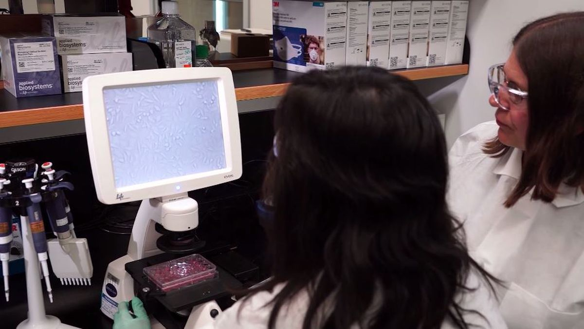 Almost every state in the United States has an outbreak of the novel coronavirus, affecting...