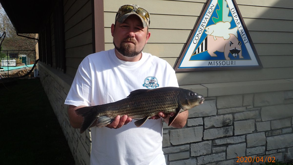 Back in April, Tyler Goodale caught a new Missouri state-record spotted sucker at Duck Creek...