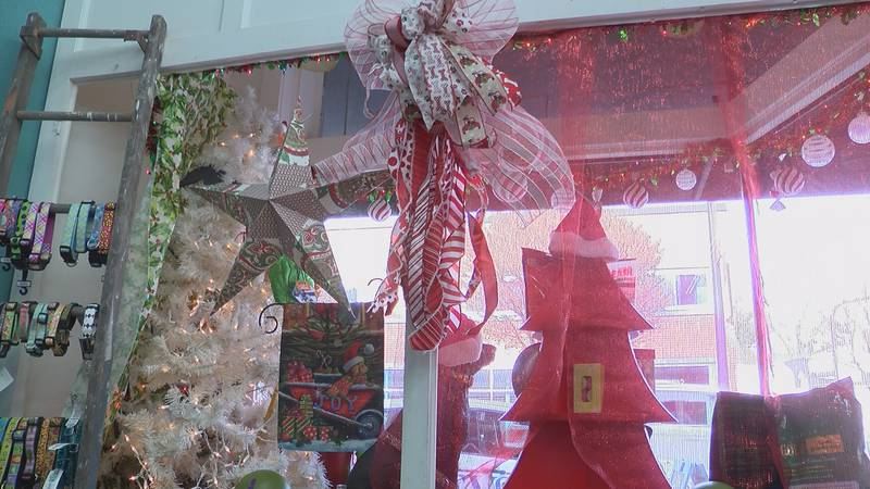 Holiday decorations can be dangerous for pets