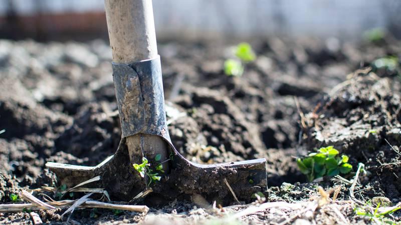 Shovel stock photo