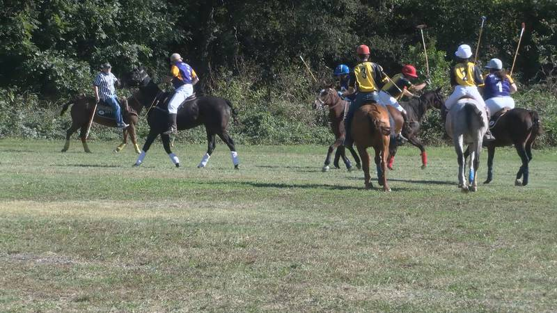 The inaugural Polo match will benefit Craighead County 4-H and Diego Ranch Inc.