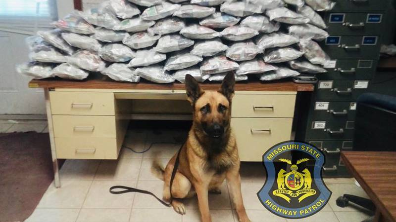 Forty-five pounds of marijuana were found during a traffic stop. (Source: Missouri State...