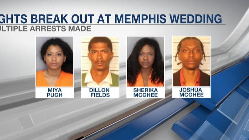 Several arrested after fight breaks out at Memphis wedding