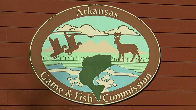 High water levels are affecting deer hunting in parts of Arkansas. (Source: KAIT)