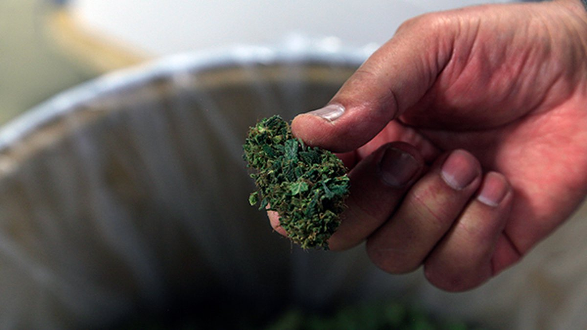 At this time, there are more than 140 medical marijuana dispensary facilities in Missouri.